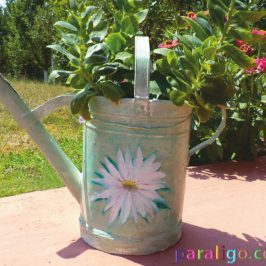 Watering can repurpose