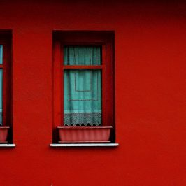 Red_Windows_George_Georgoulias